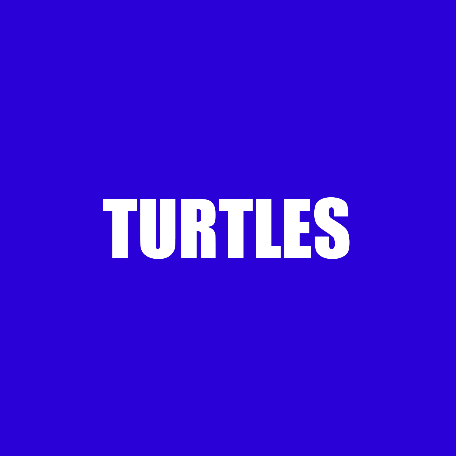 turtles.png
