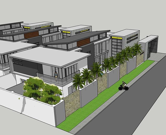 Palm_ boulevard Houghton concept