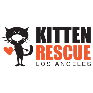 Kitten Rescue Los Angeles