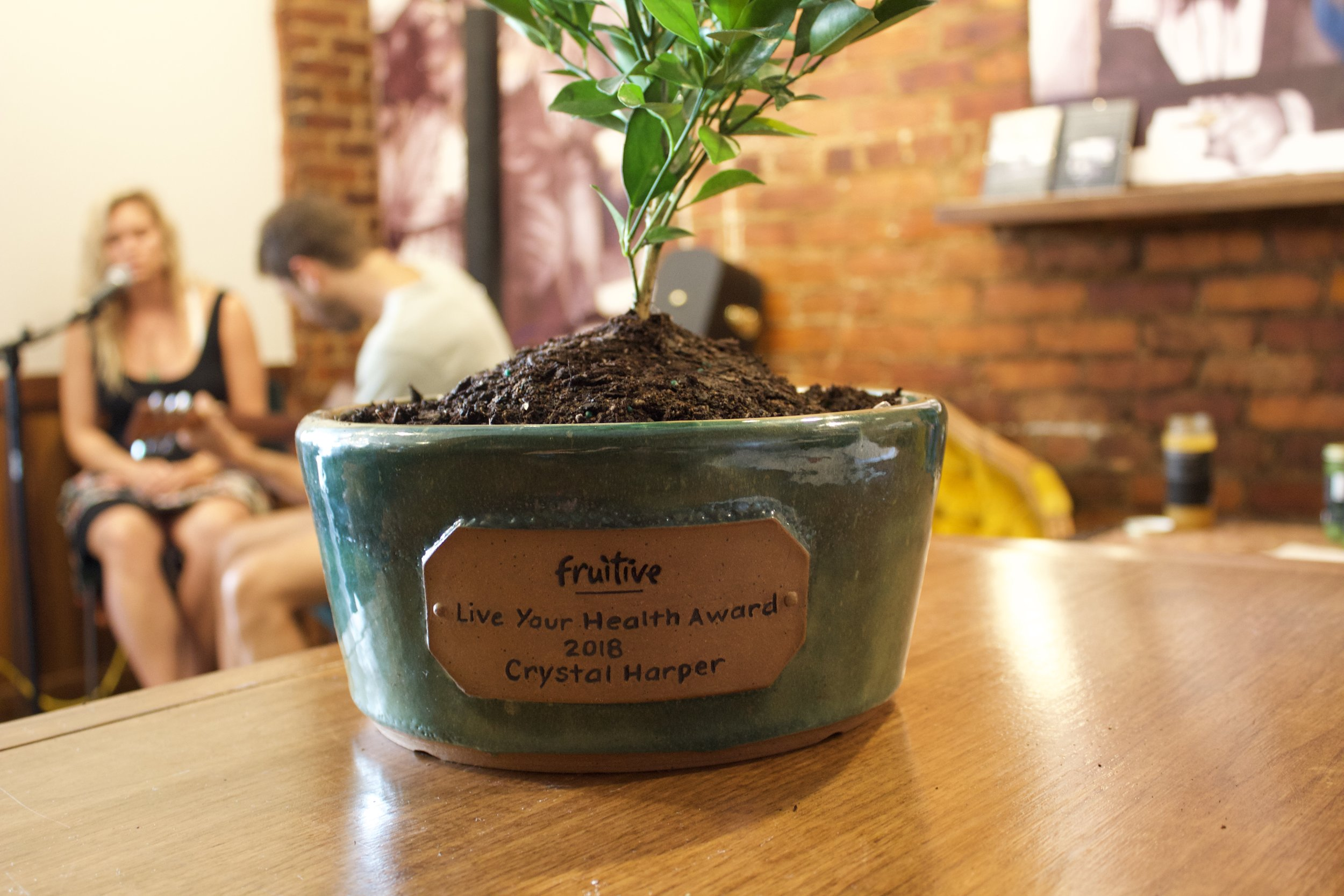 Local custom-made pot by William Kemp
