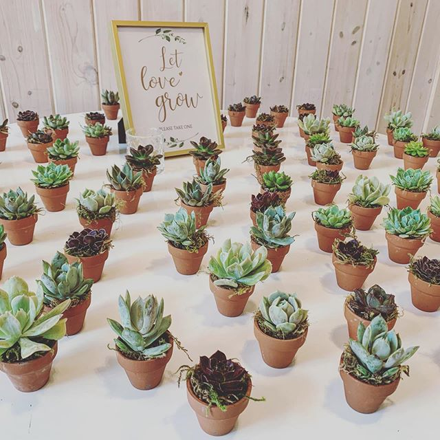 Little details 🥰 happy wedding day Ryan & Shelby! #lovesuccswedding #lovesuccs #lovesuccstx