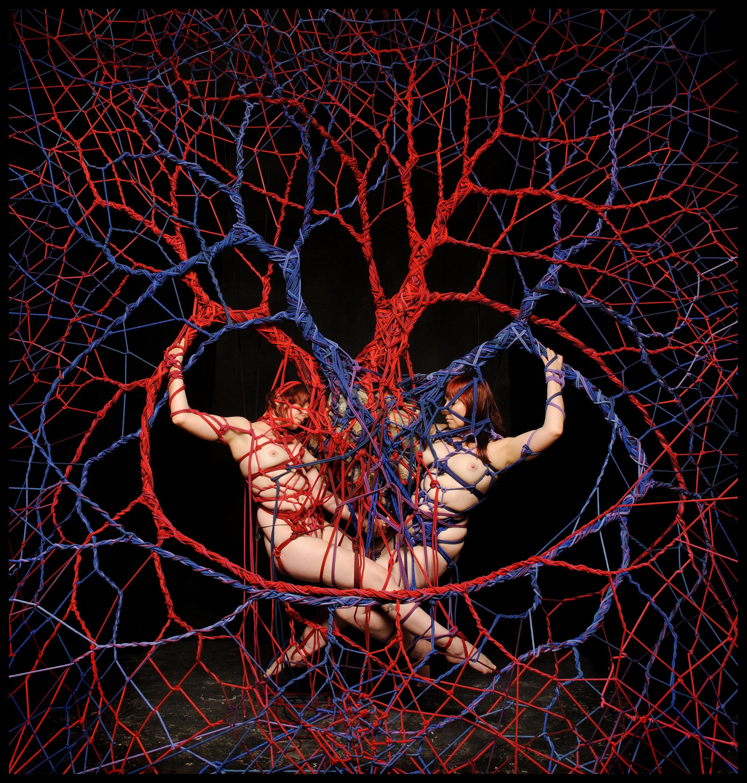 Image by Garth Knight www.garthknight.com