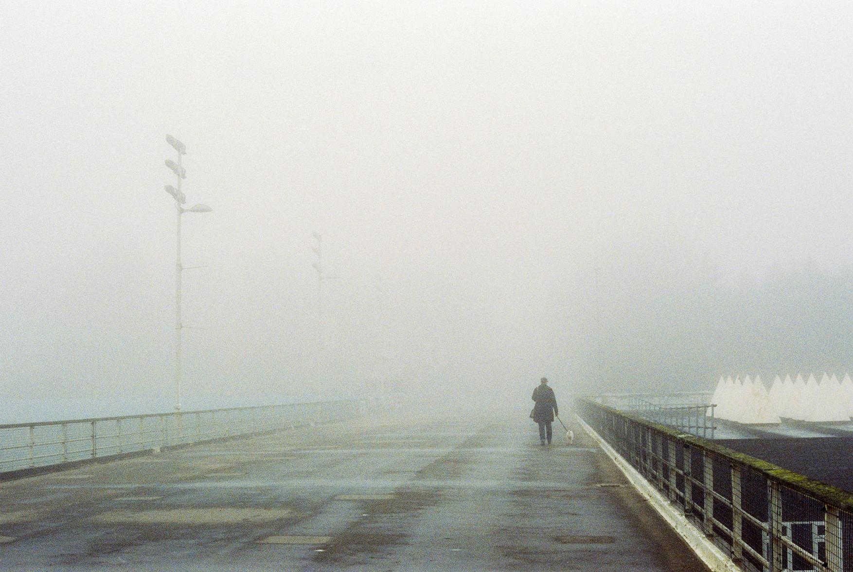 Crystal Palace Fog by Dmitry Serostanov