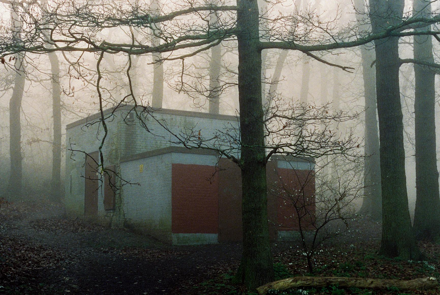London Fog by Dmitry Serostanov