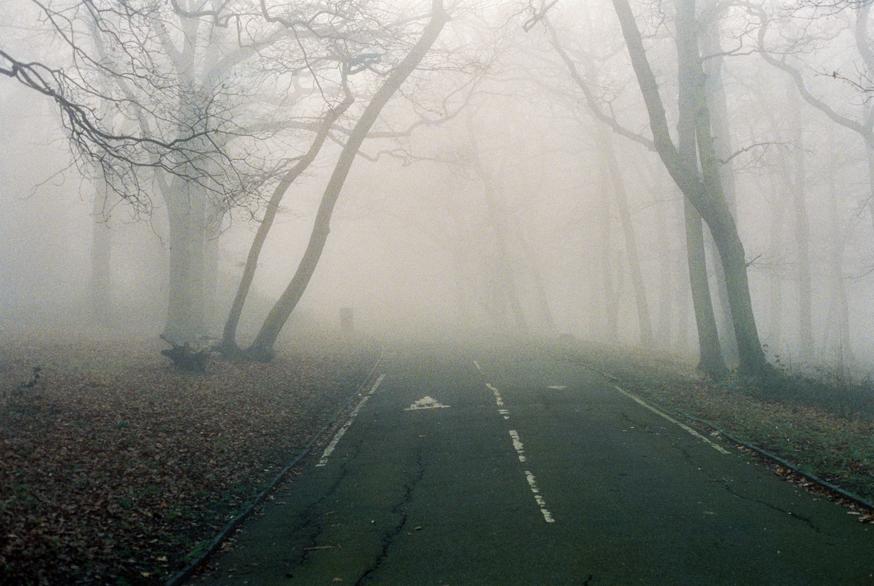 Film Photography by Dmitry Serostanov