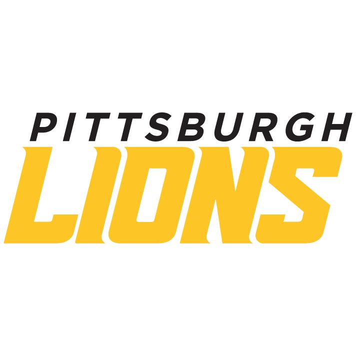 Lions Wordmark.png