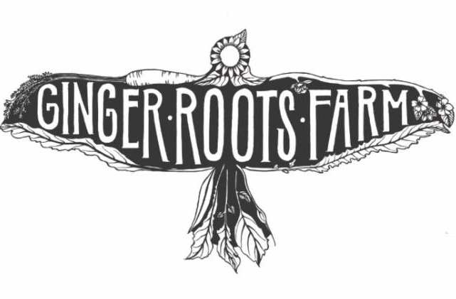 GINGER ROOTS FARM