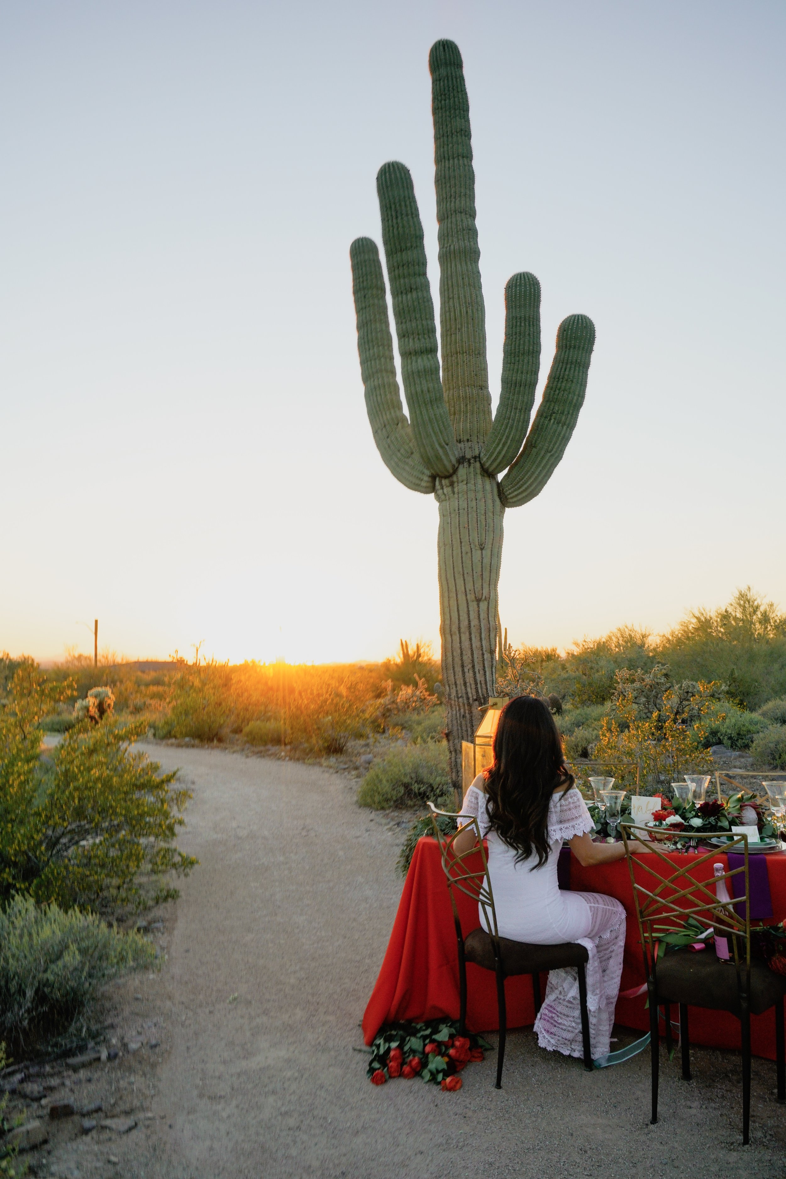Wedding Styled Shoot Arizona Dessert Katie Laines Design and Coordination Cactus Color Sunset Dinner
