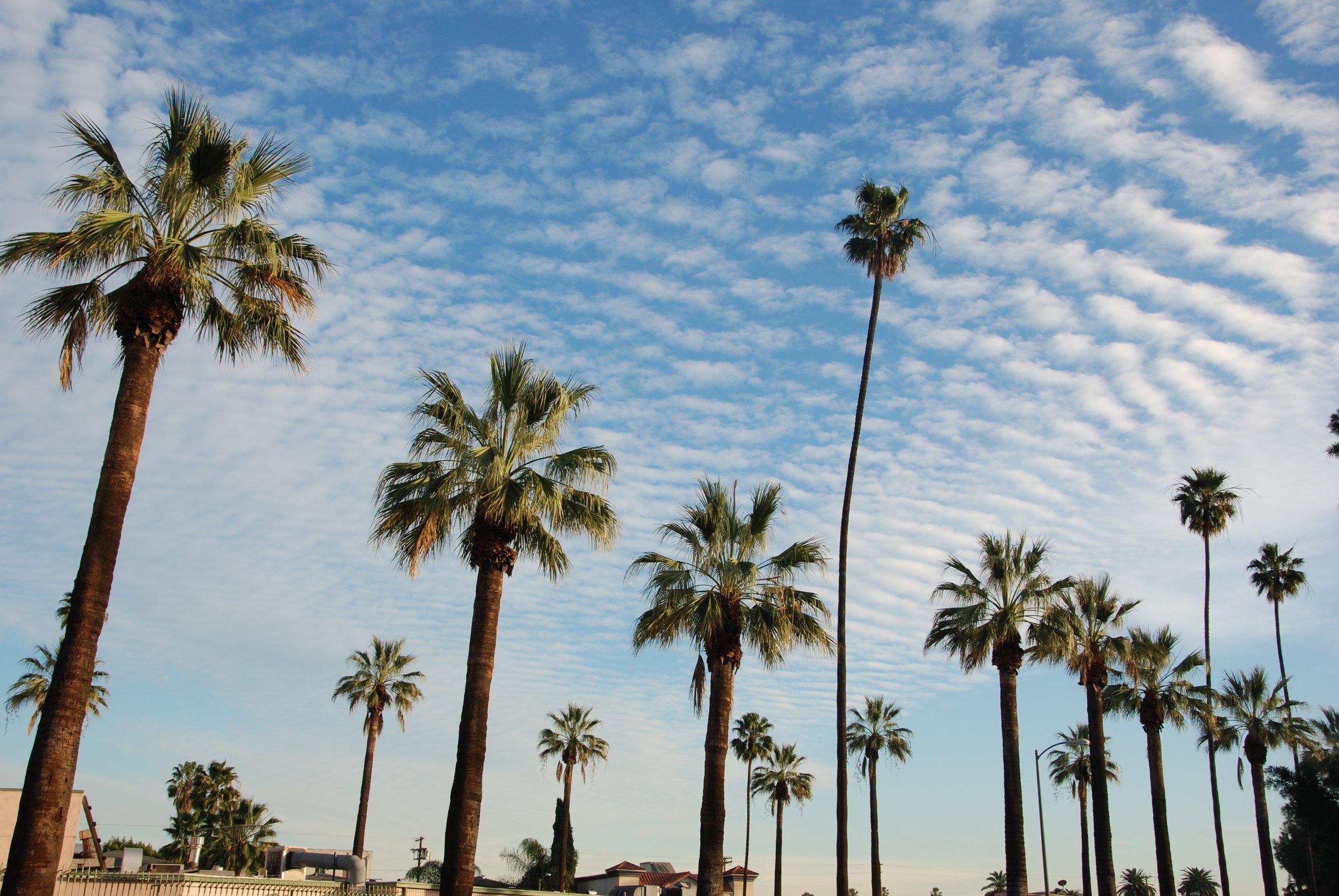 Mid Los Angeles