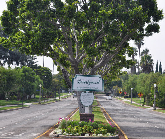Beverlywood's Tree-Lined Streets