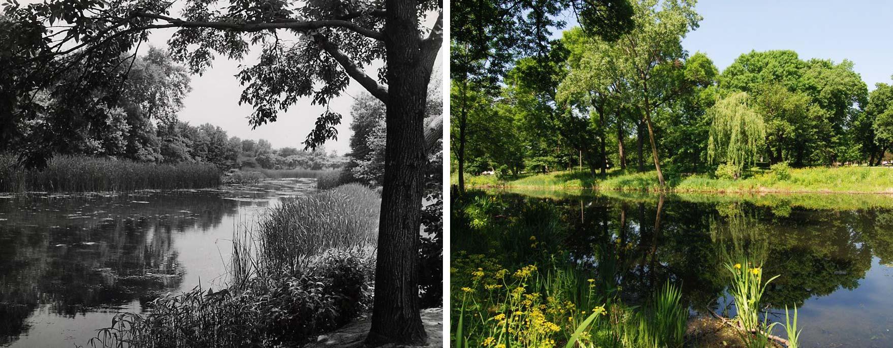 Left: Jens Jensen's Humboldt Park Prairie River, 1941. Chicago Park District Records: Photographs, Special Collections, Chicago Public Library. Right:Humboldt Park Prairie River, 2013. Photo by James Iska.
