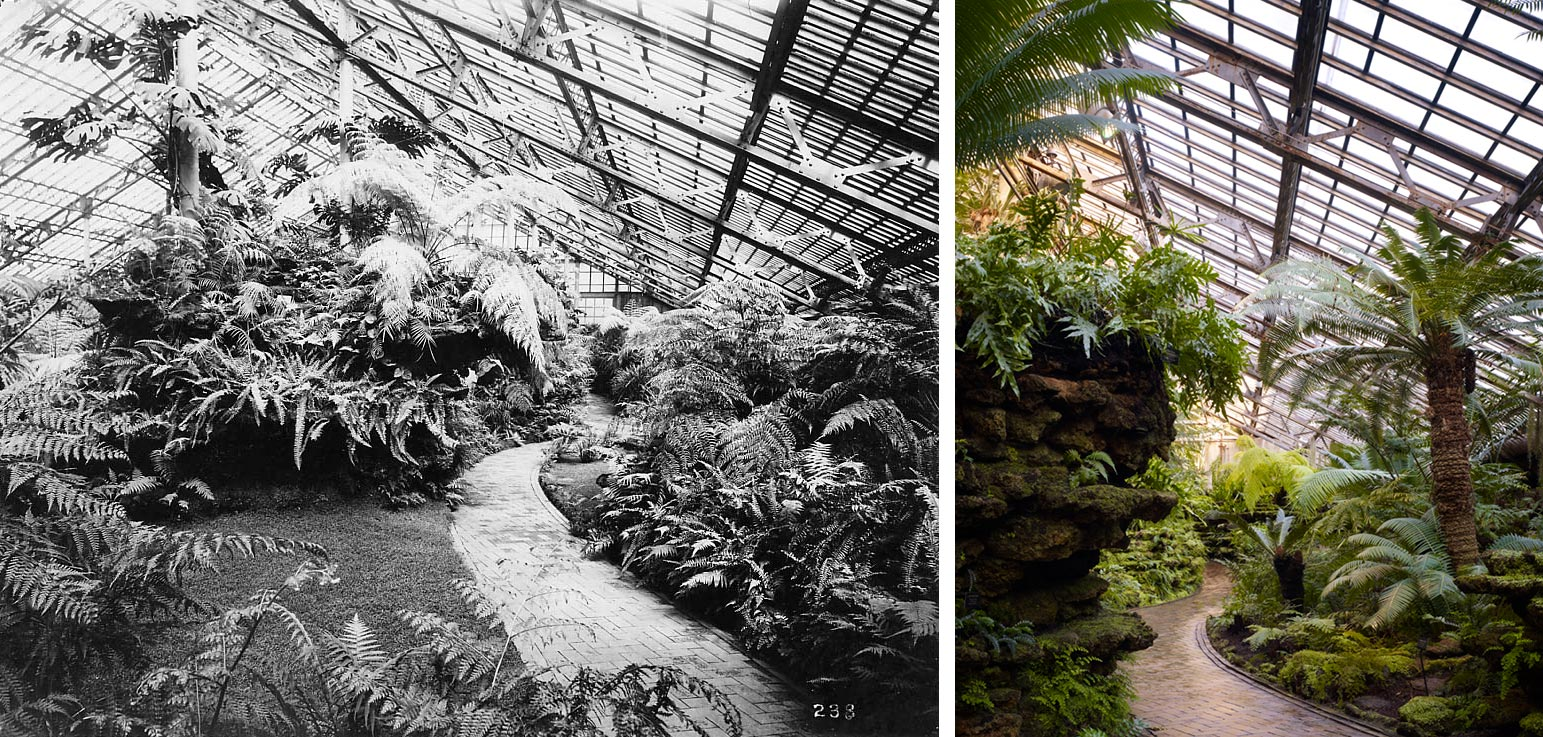 These two photos show that the Garfield Park Conservatory's Fern Room is remarkably intact today. L- ca. 1910; R- 2014. Hedrich Blessing Photographers.
