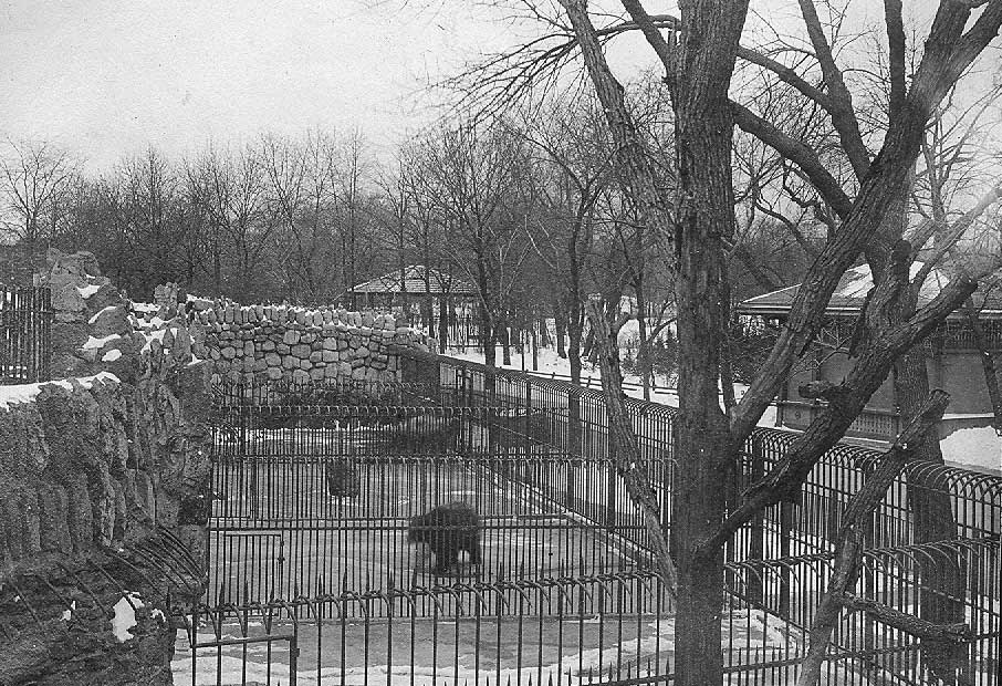 Lincoln Park Zoo, ca. 1900. Chicago Park District Records: Photographs, Special Collections, Chicago Public Library.