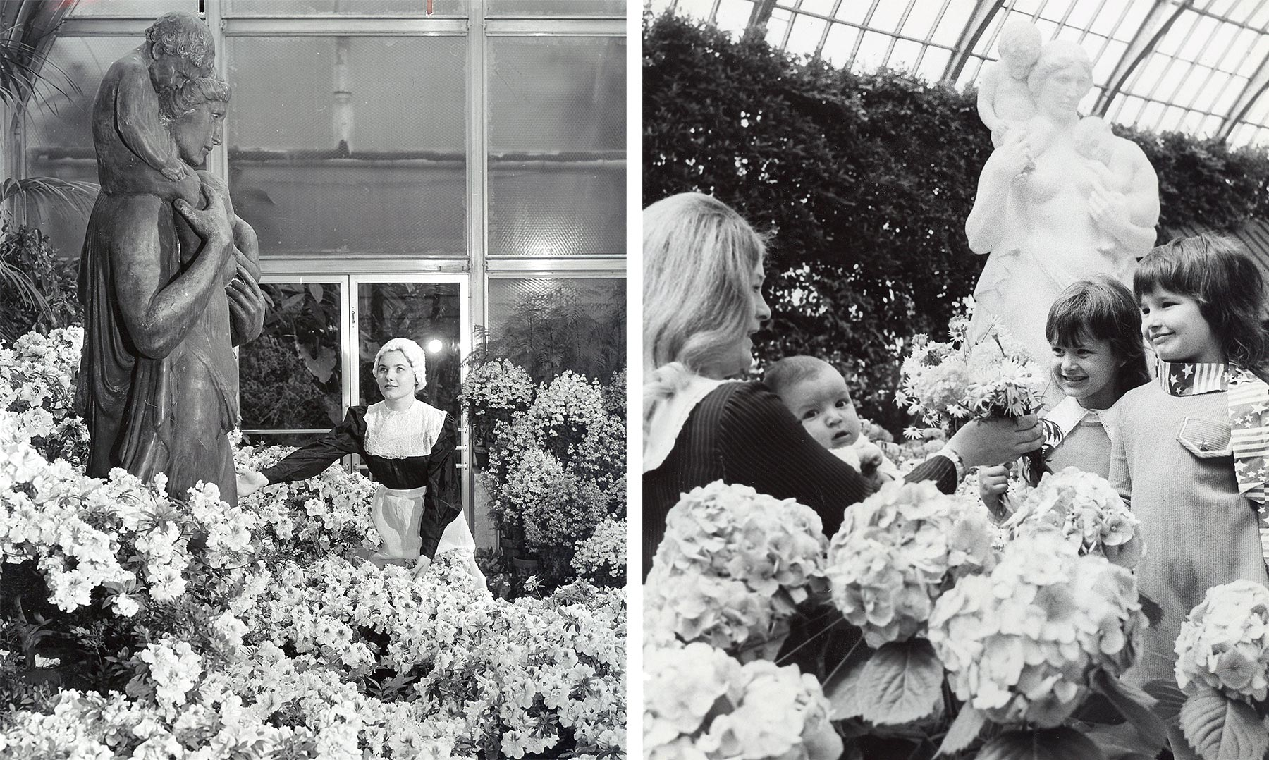 These photographs show  Charitas  in its second and third locations, in Lincoln Park in 1953 (L) and the Garfield Park Conservatory in the 1970s (R). Chicago Public Library Special Collections, Chicago Park District Archives, Photos.