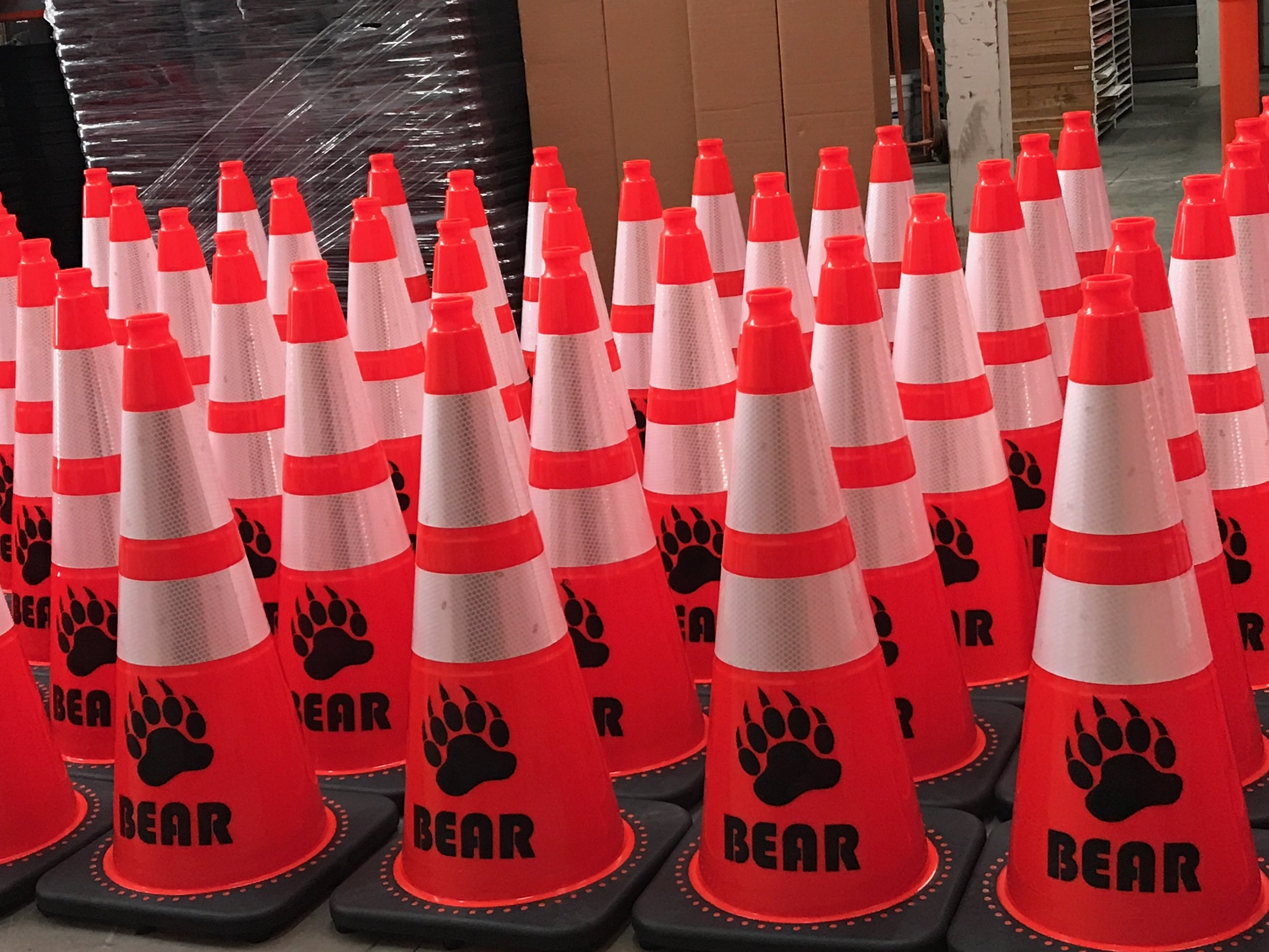 Bear Cones.jpeg