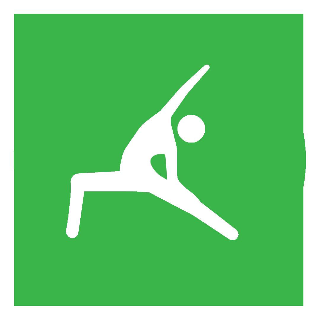 flexibility icon.png