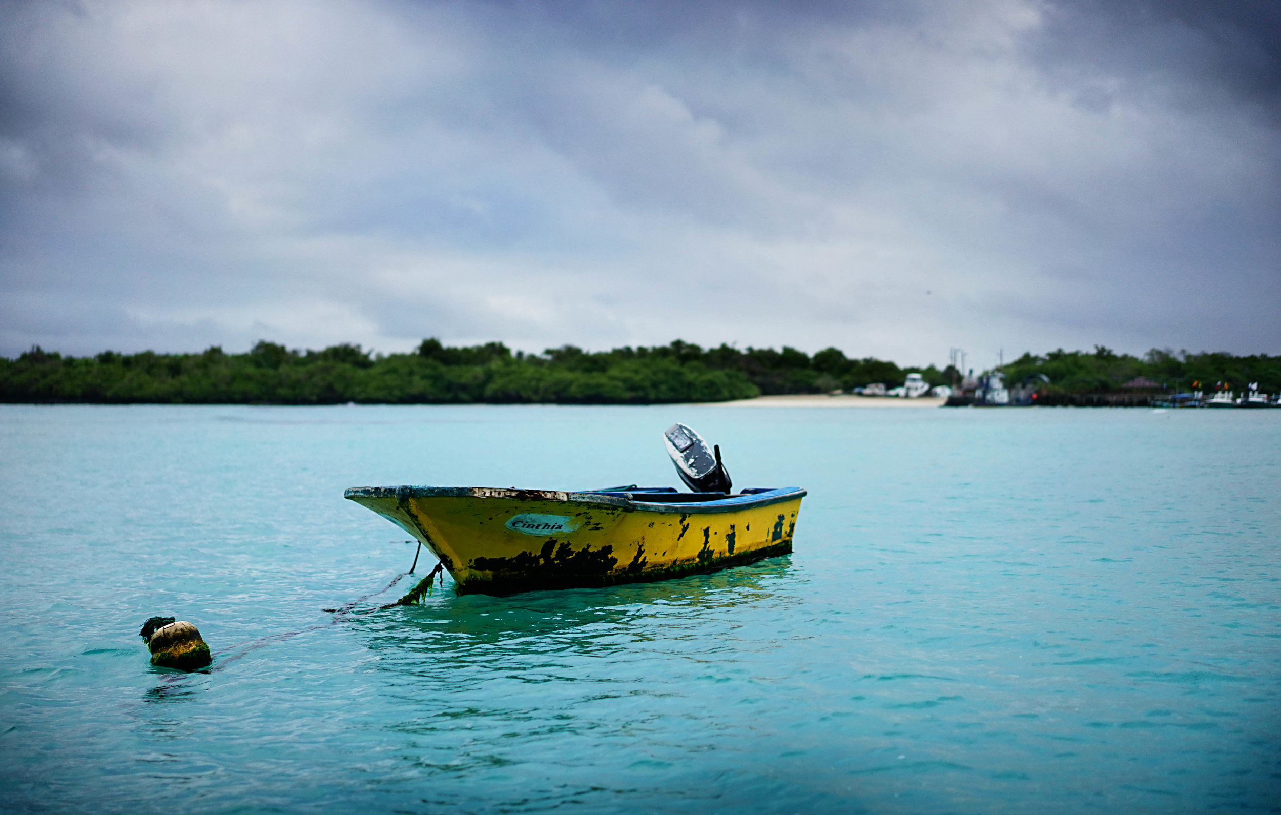 Puerto Villamil, Isabela Island