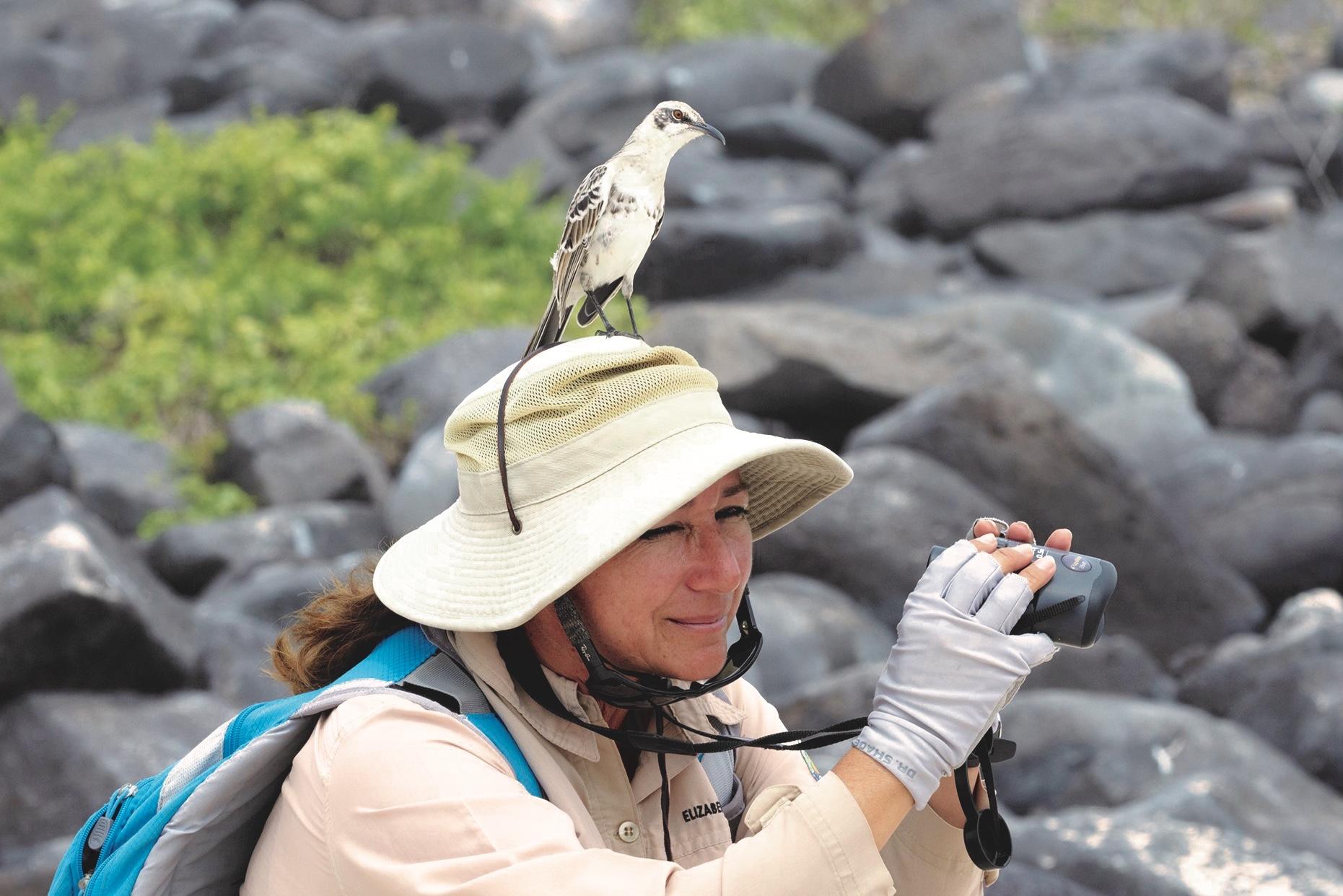 Elizabeth (Ely) and an Española Mockingbird