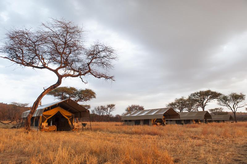 Central Serengeti: Kati Kati Tented Camp
