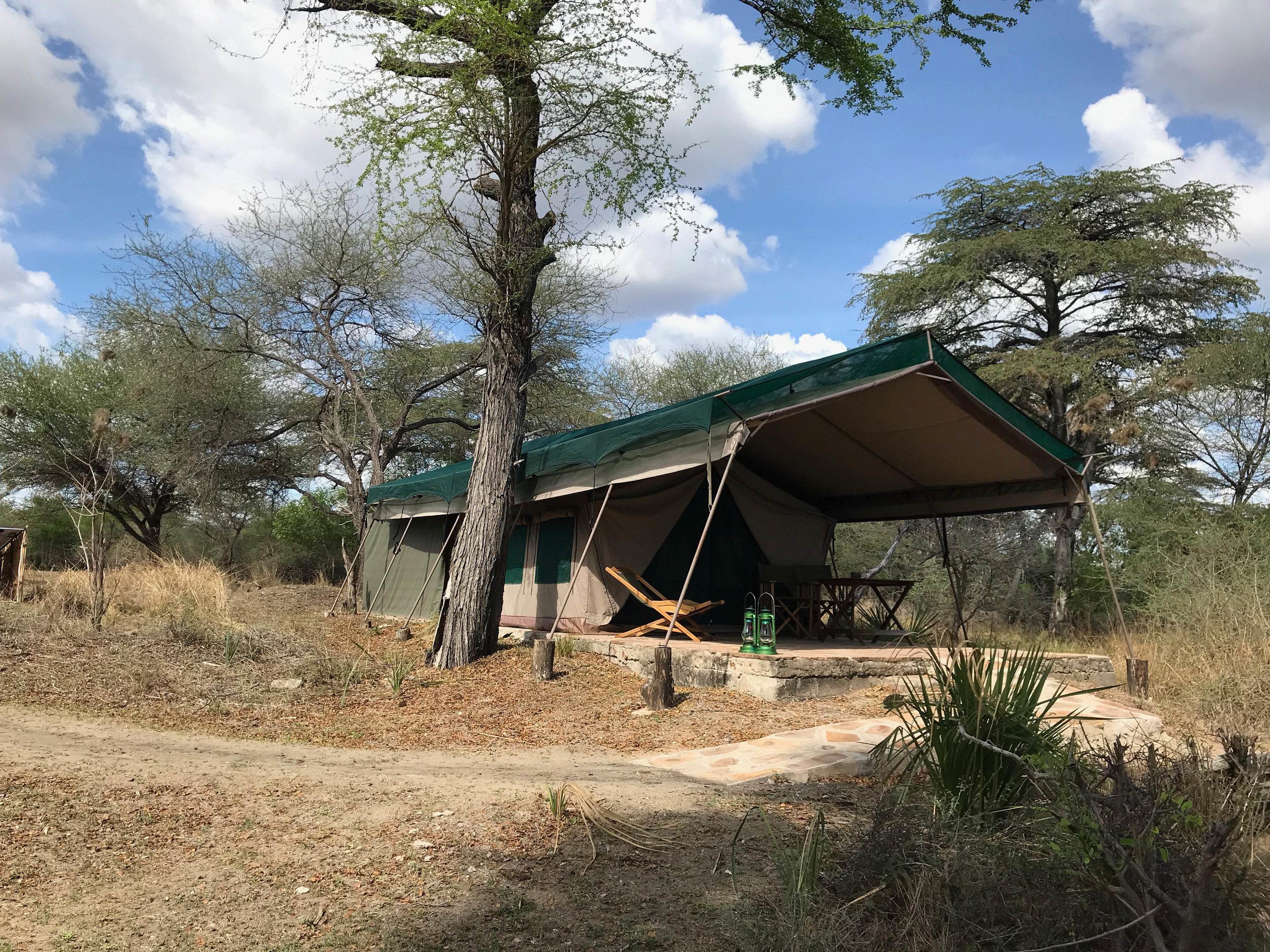 Selous: Lake Manze Tented Lodge