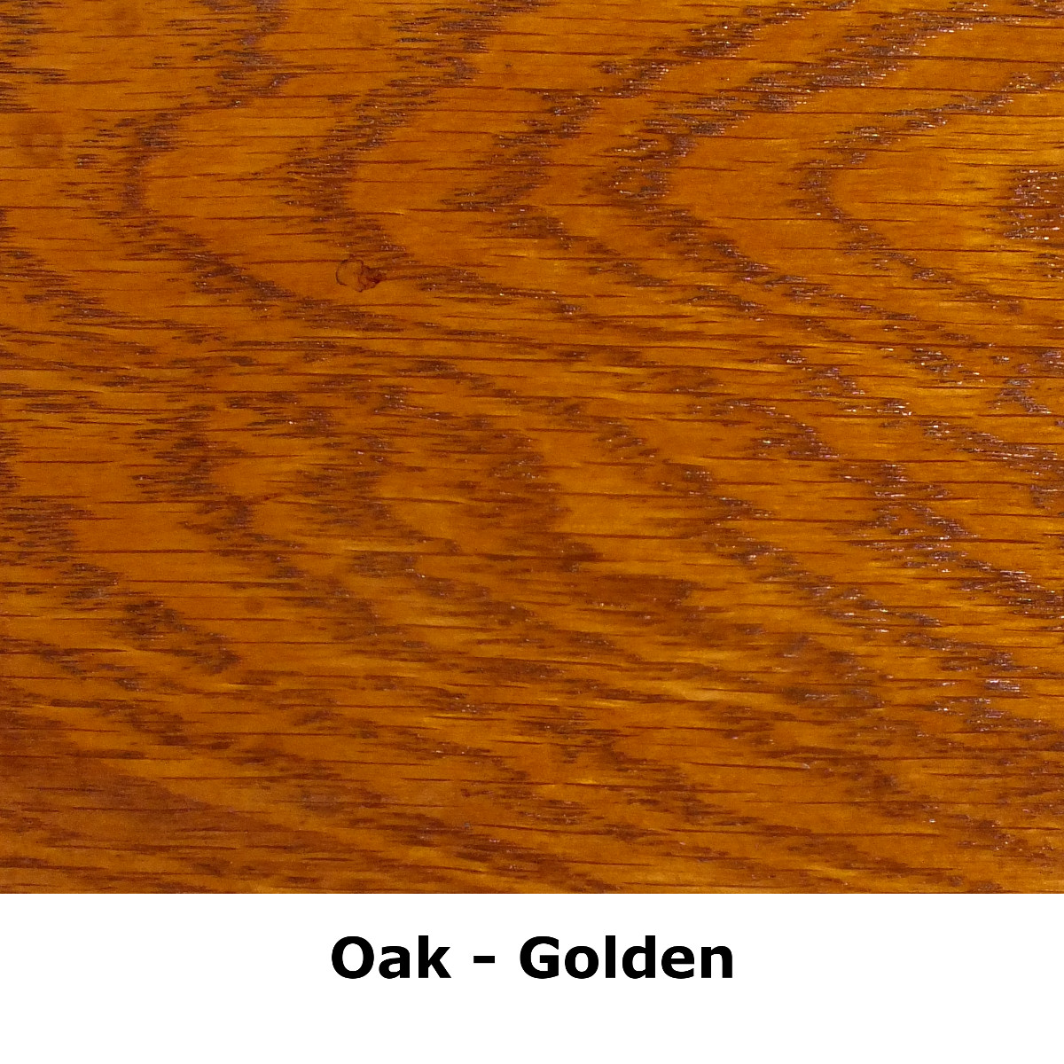 sq oak golden.jpeg