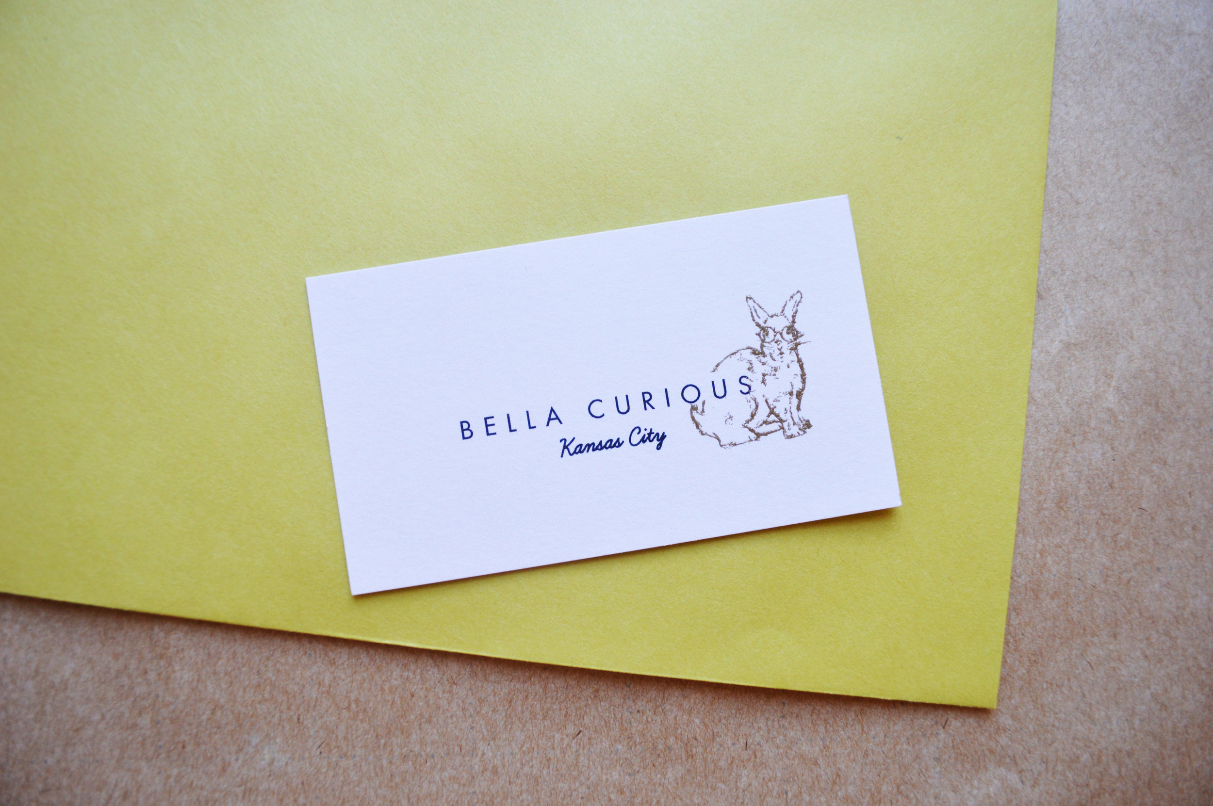 bella curious card.jpg