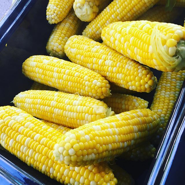 It's the corn roast today! Come join us 3 to 7 PM for tons of fun, lots of corn products, bread, meat, eggs, wine, cider, baked goods and all the other favourites the market brings!! 🌽 . . . #cornroast #infamous #corn #annettevillage #farmersmarket #corn #local #supportlocal #torontoeats #avfm2019