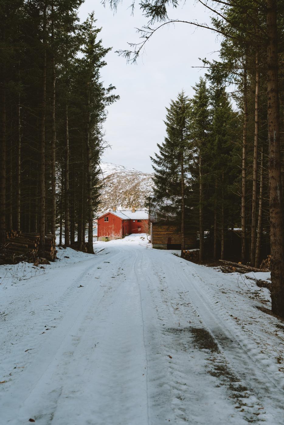 Back roads of Lofoten
