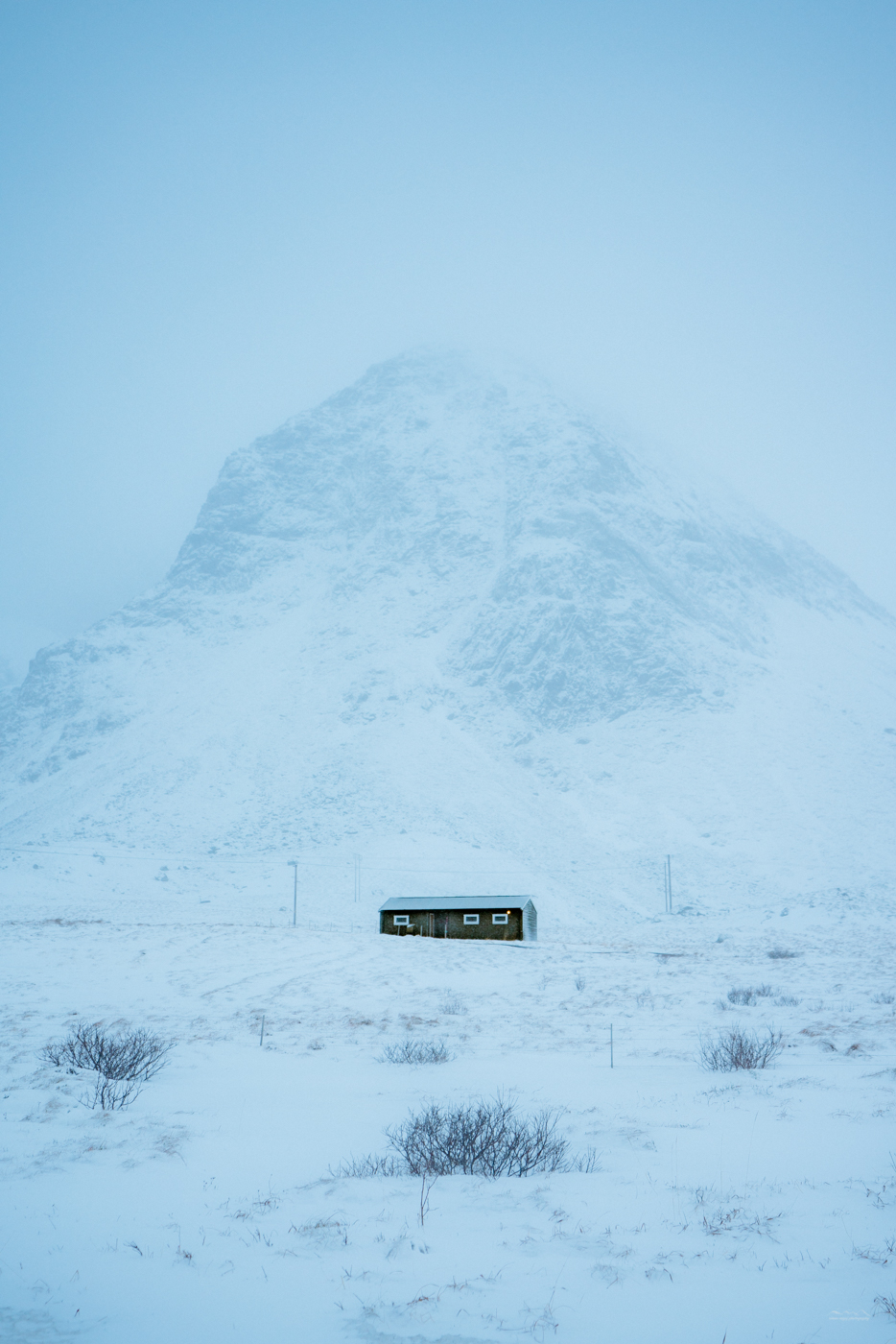 A blizzard in Lofoten