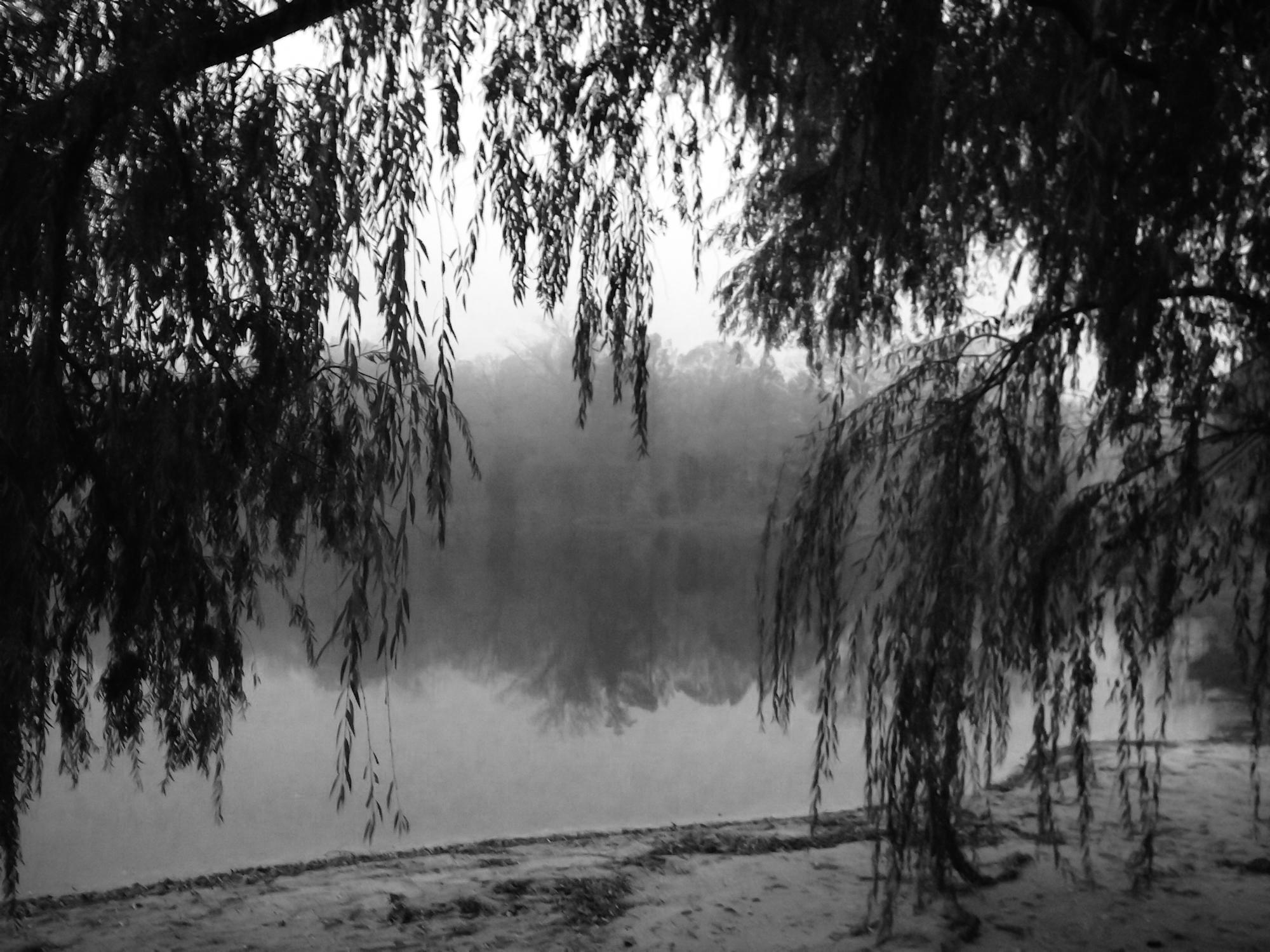 Boo's Pond