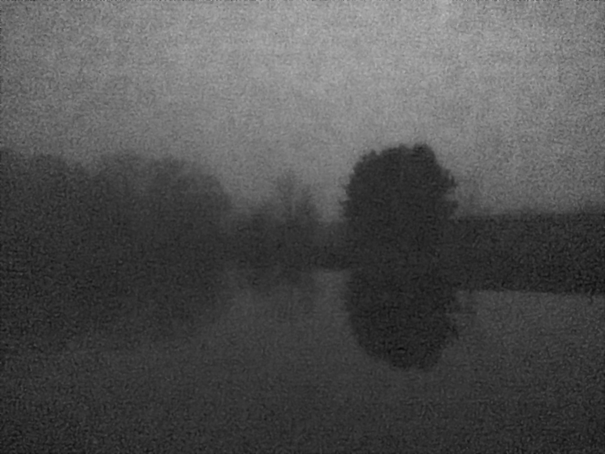 Dark Pond copy 2.jpg