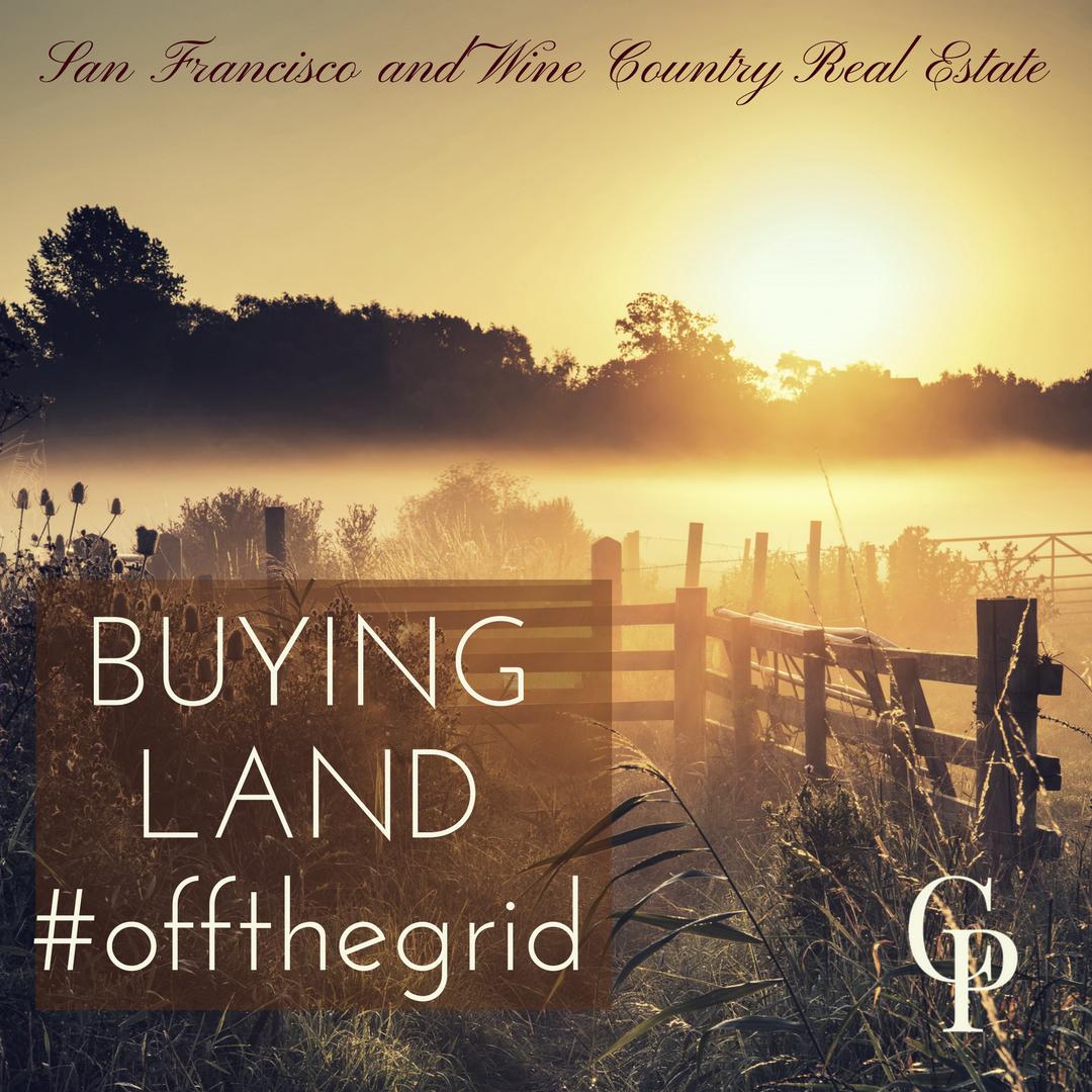 buyingland_cynthiapalmer.png