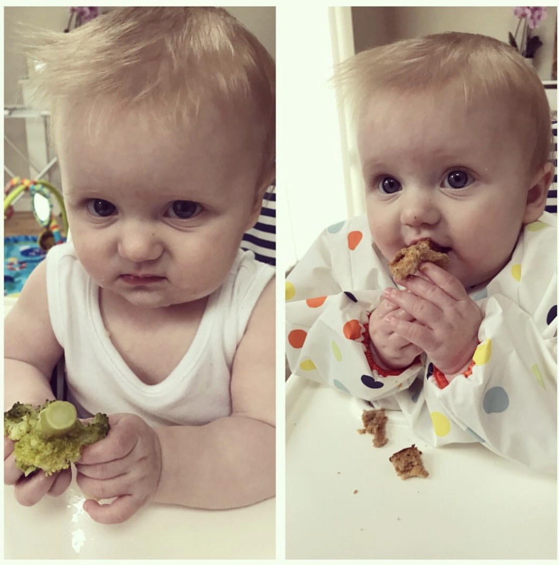 """""""So the baby led weaning has begun, these are the faces Broccoli Vs Toast...the eyes say it all!""""   @mummasummers Instagram"""