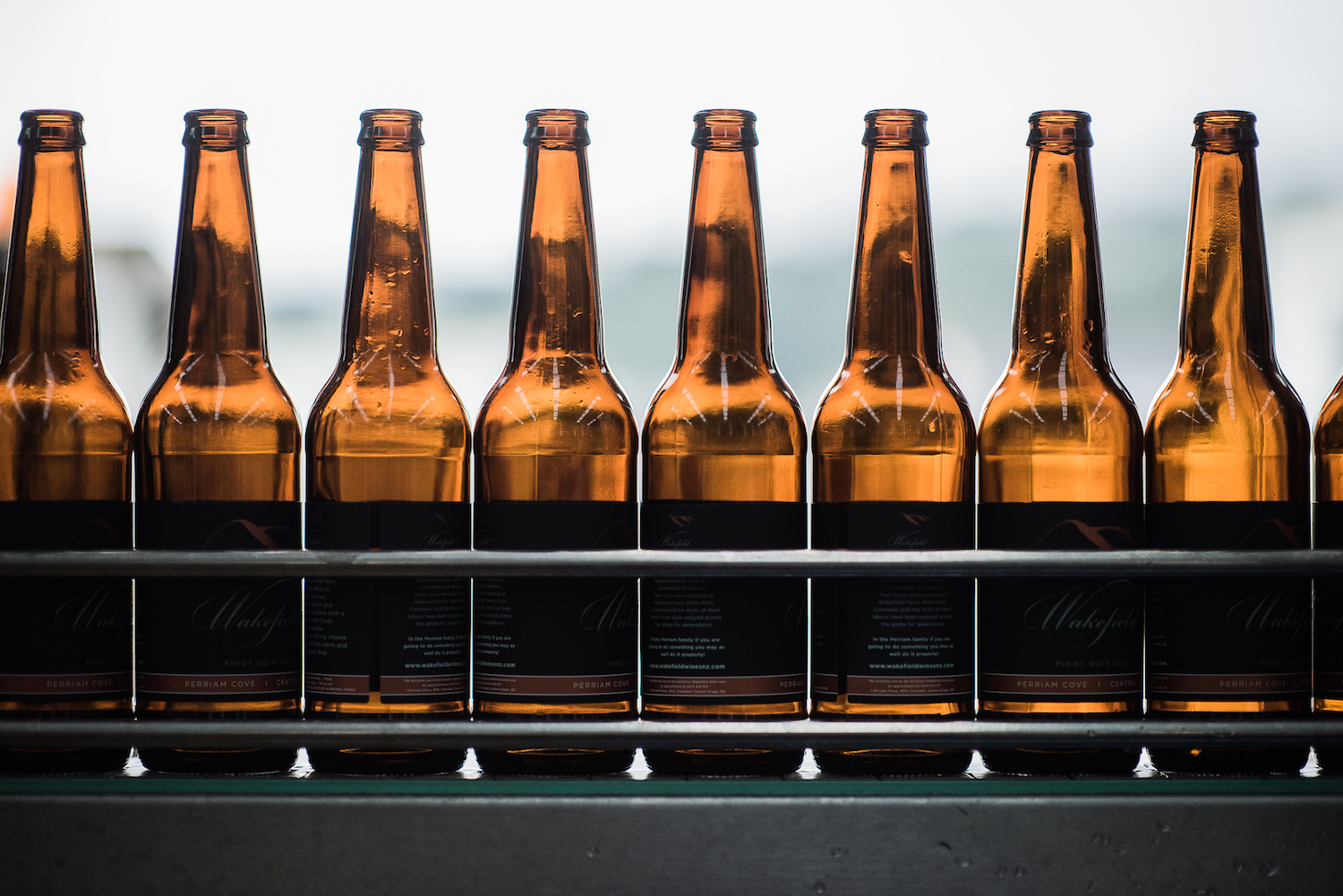craft beer bottles on bottling line