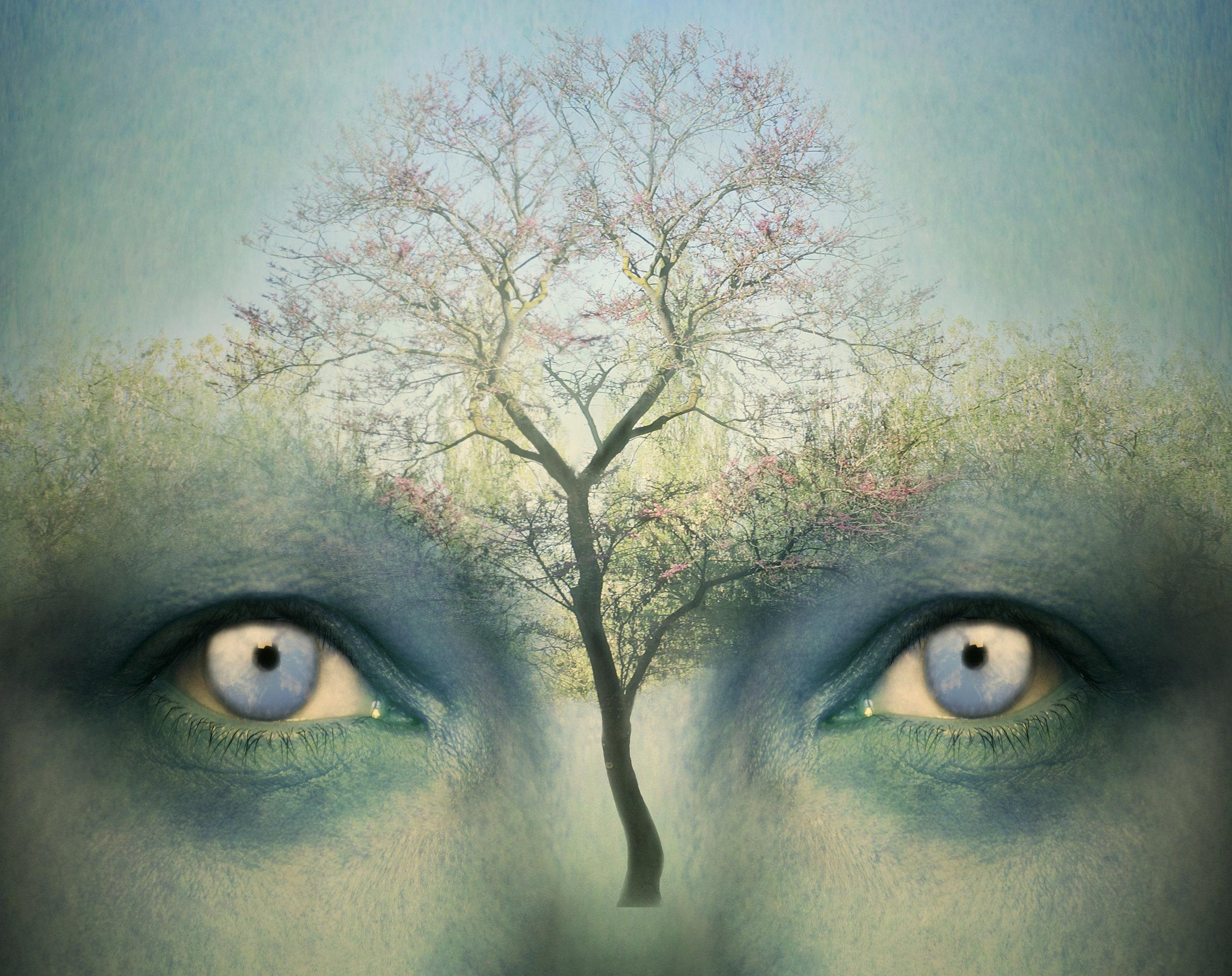 mind-with-tree.jpg