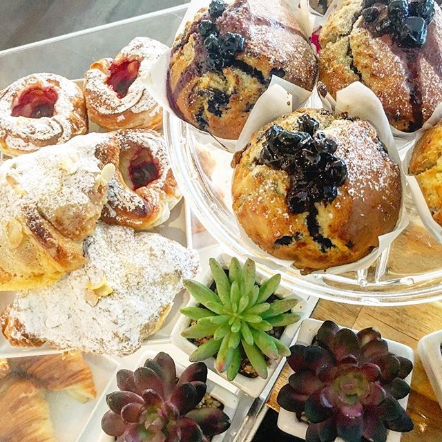 Succulently fresh muffins & pastries!