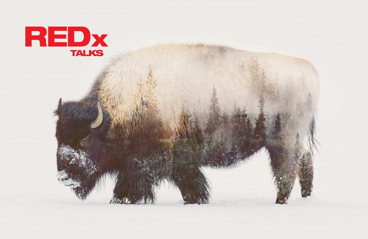 redx-talks.jpg