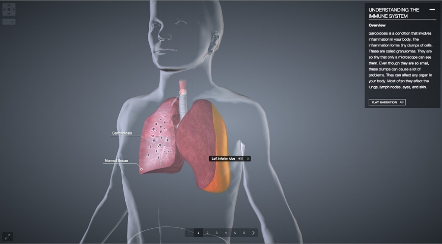 5-knowarc-biodigital.jpg