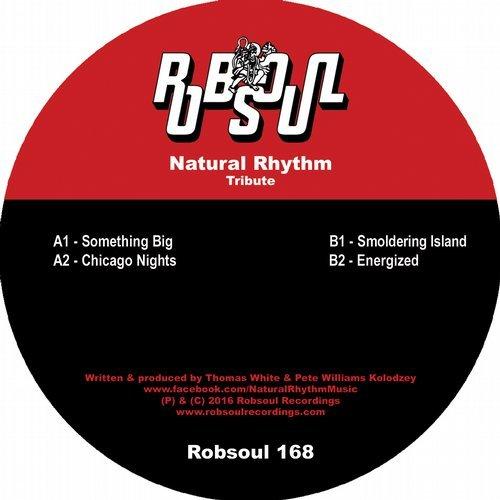 Natural Rhythm Tribute  Robsoul (2016)