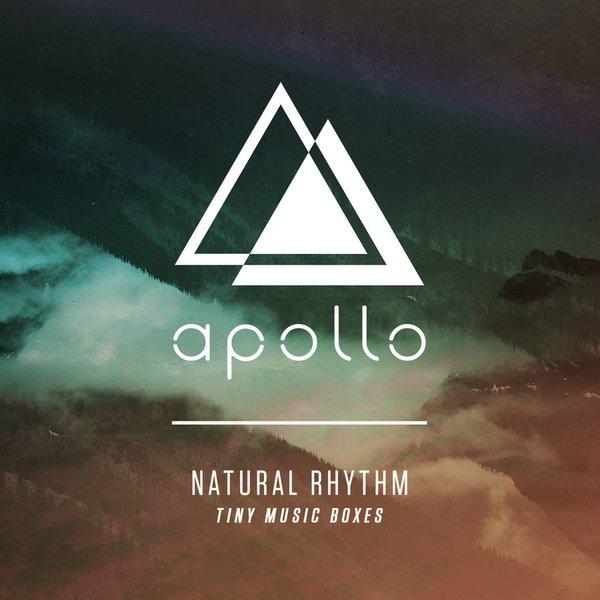Tiny Music Boxes  Apollo Music (2017)