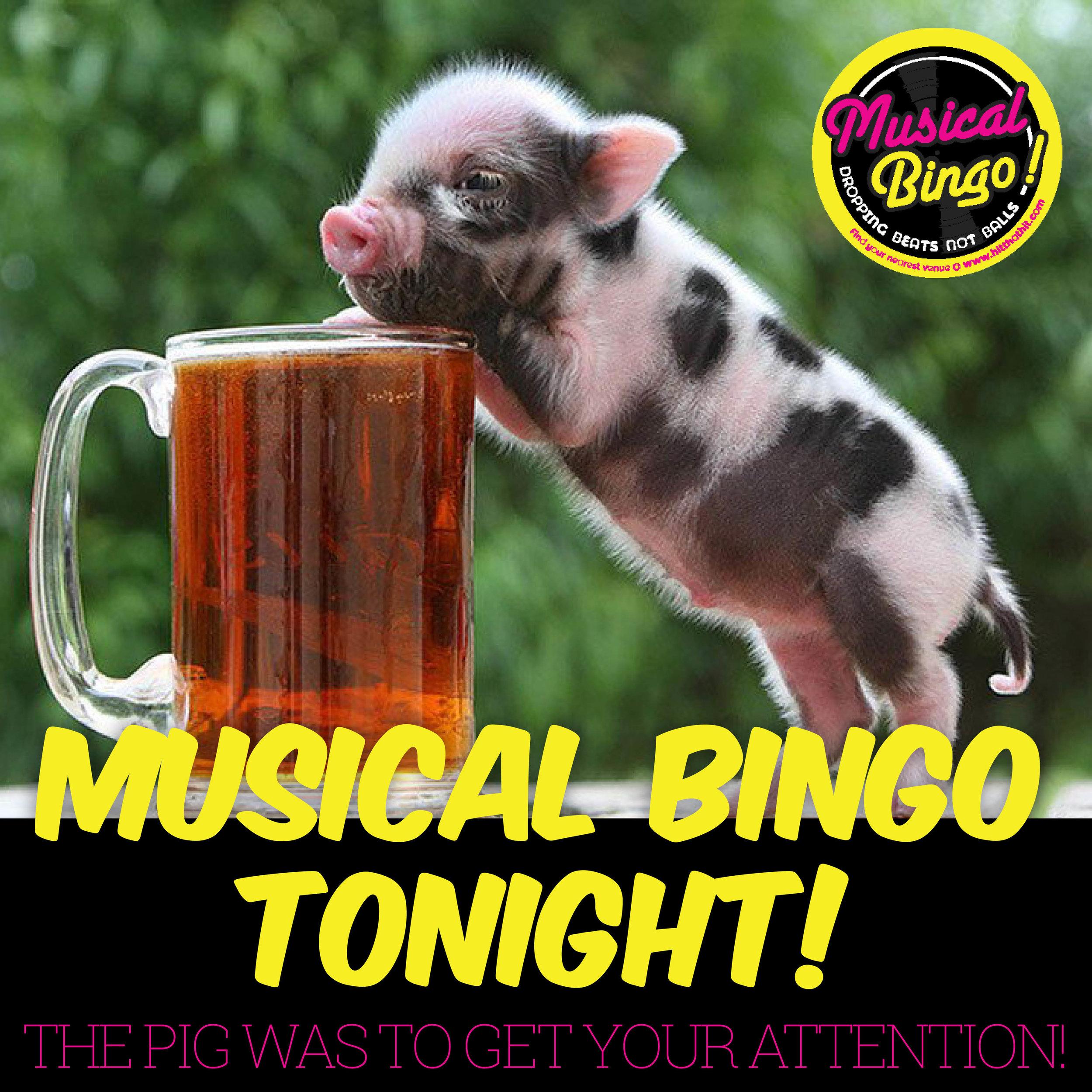 MUSICAL BINGO SOCIAL MEDIA & NIGHTLIFE14.jpg