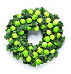 Sprout.png
