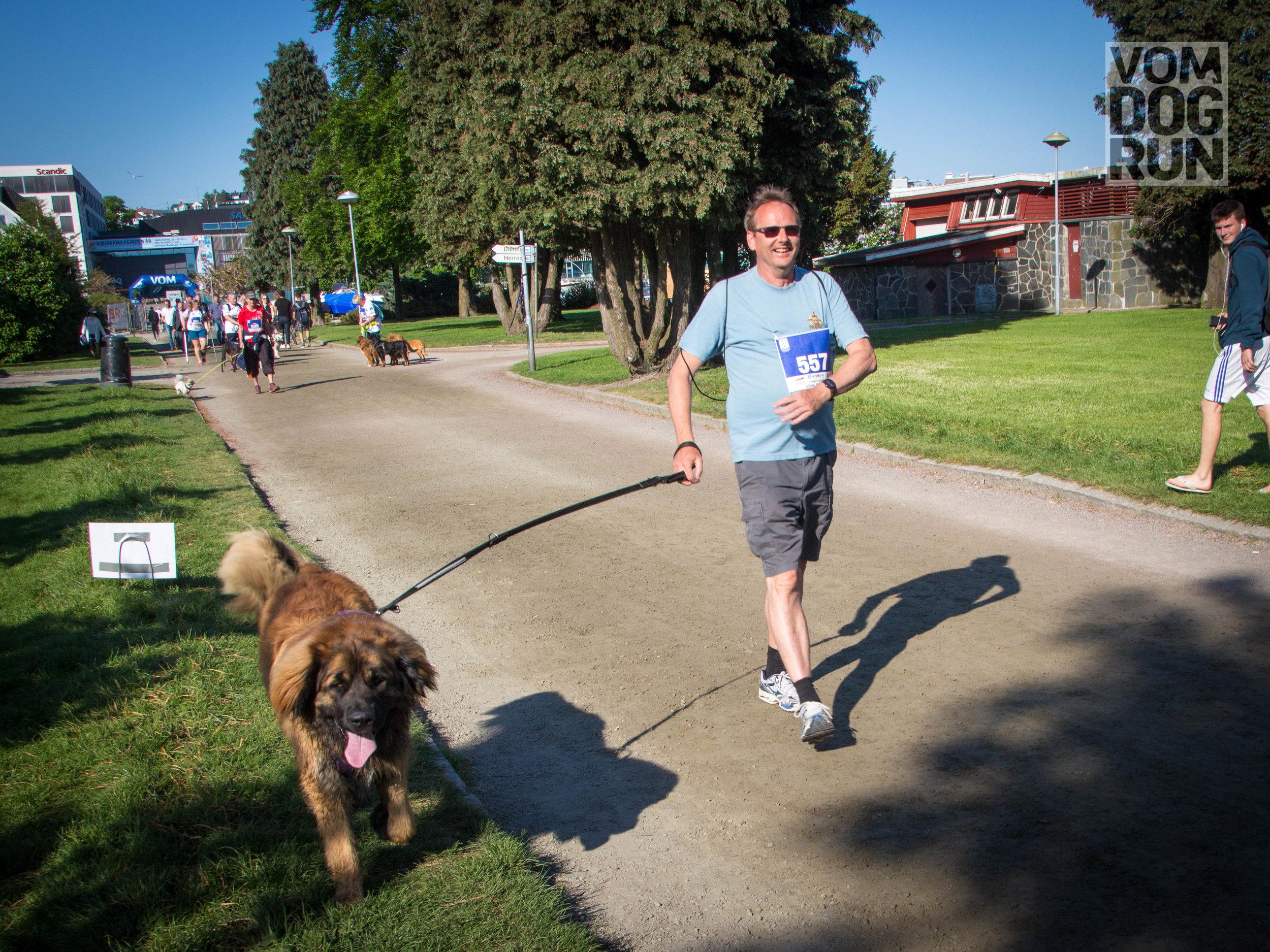 VOM Dog Run SoMe-32.jpg