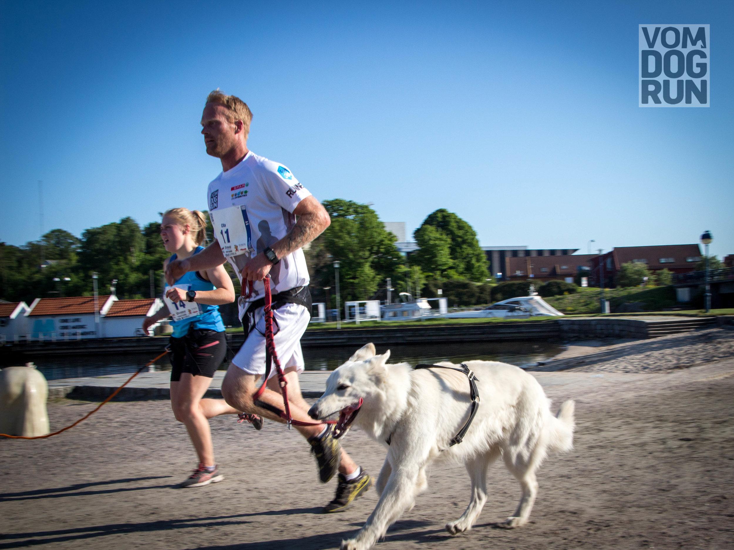 VOM Dog Run SoMe-48.jpg