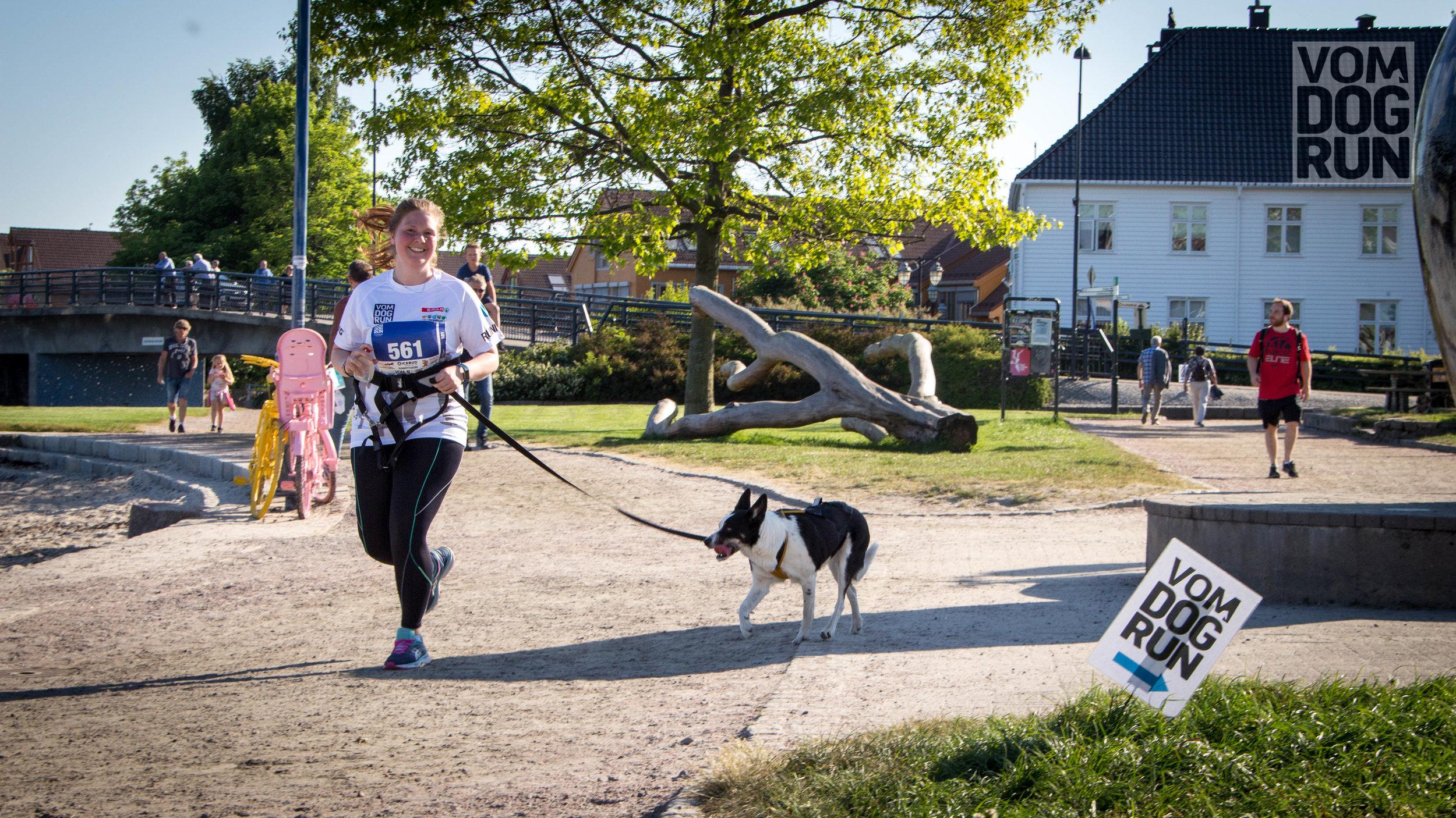 VOM Dog Run SoMe-42.jpg