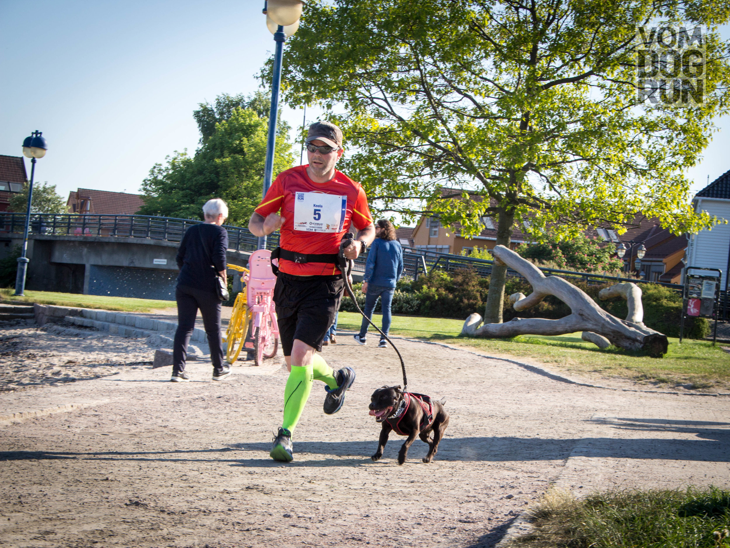 VOM Dog Run SoMe-53.jpg