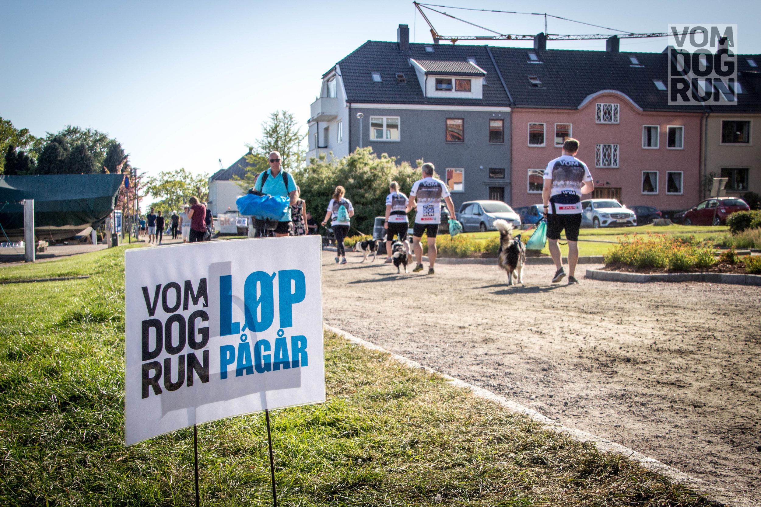 VOM Dog Run SoMe-4.jpg