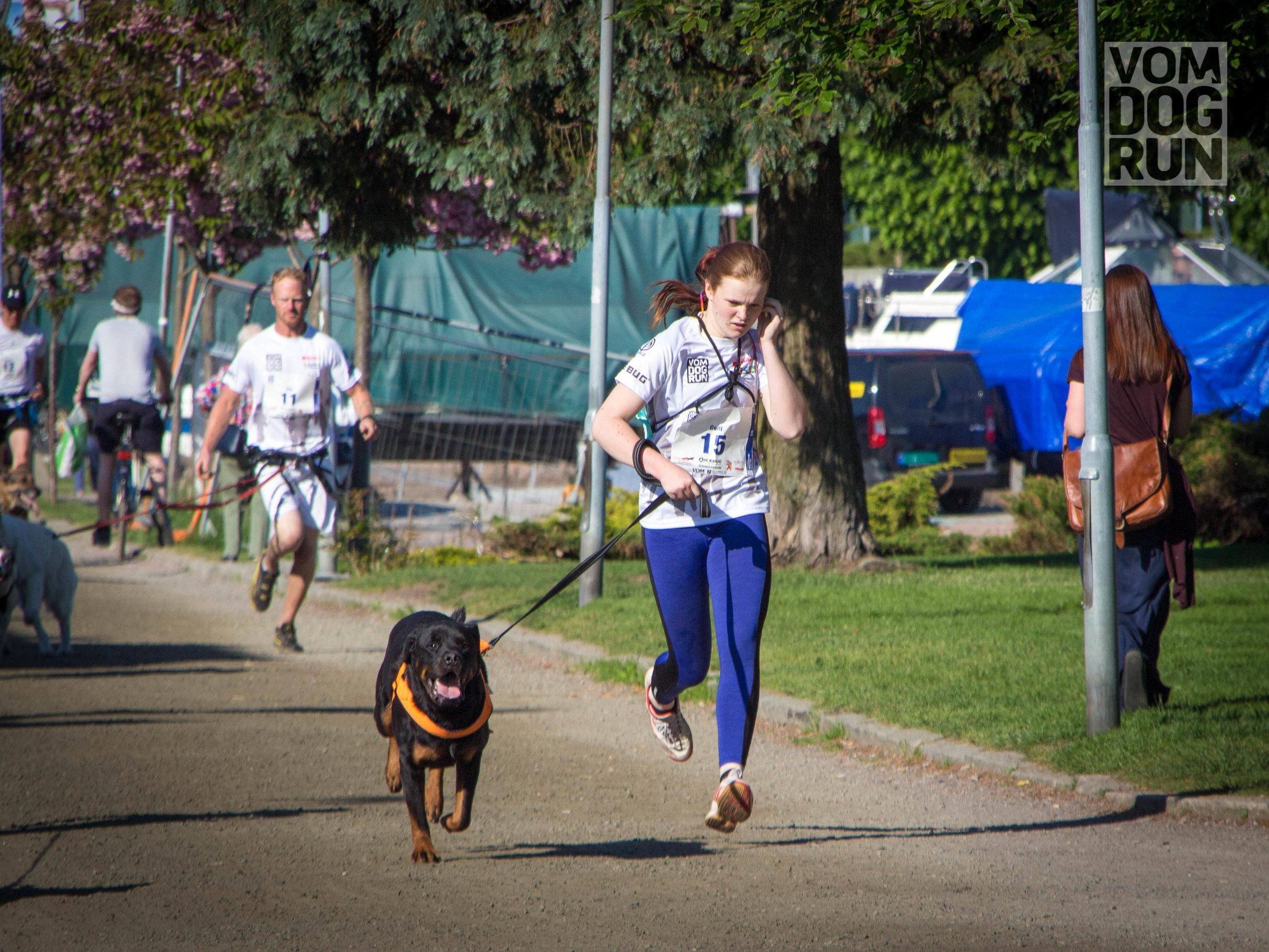 VOM Dog Run SoMe-13.jpg