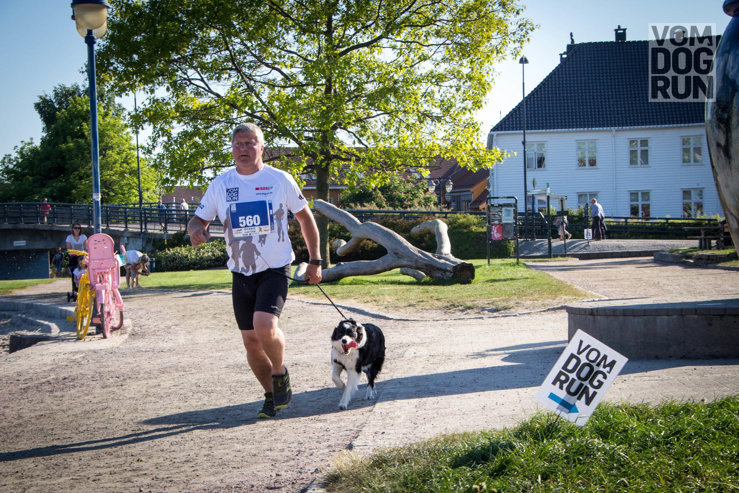 VOM Dog Run SoMe-40.jpg
