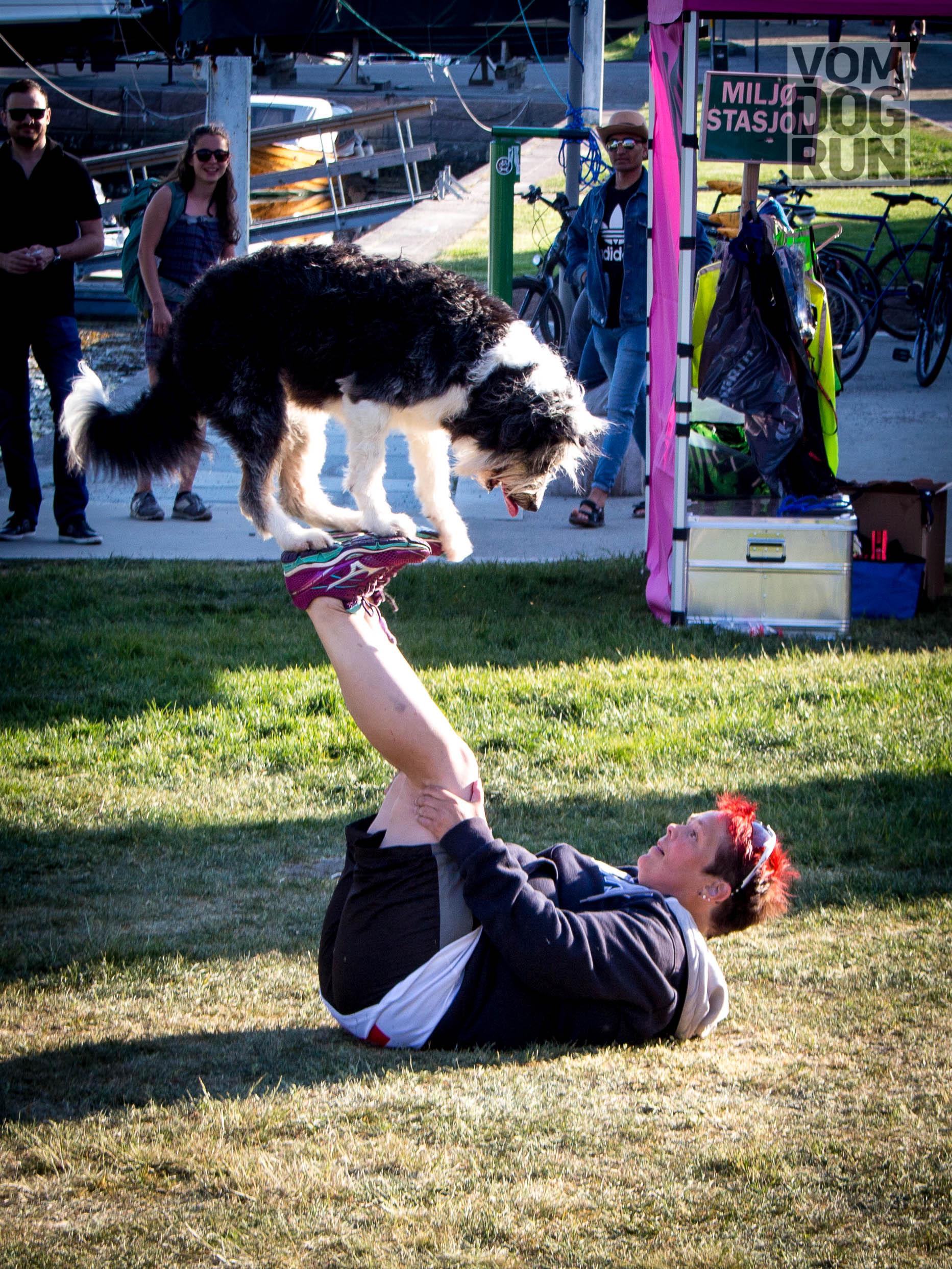 VOM Dog Run SoMe-97.jpg